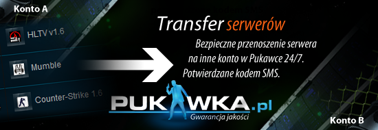 transfer_serwerow.png